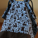 Baby Isaac's Car Seat Cover
