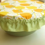 Picnic Basket Part 4: Salad Bowl Cover