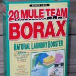 Mighty 20 Mule Team Borax
