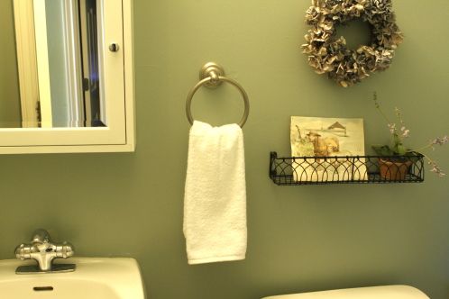 The Plain Old Hand Towel In ...