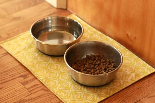 mat for dog dish