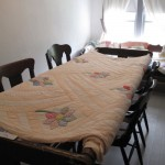 Quilts at Historic Moyle Park